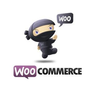 WooCommerce - Parim WordPress E-poe moodul